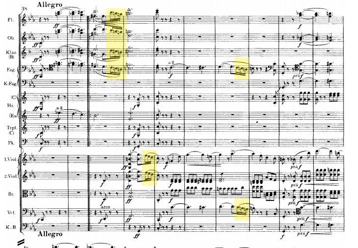 Brahms: Symphony n.1 movement 1 - ex-1