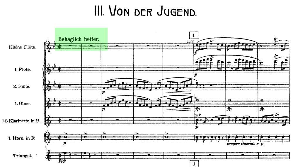 Mahler - Das Lied von der Erde - mov.3 ex.1