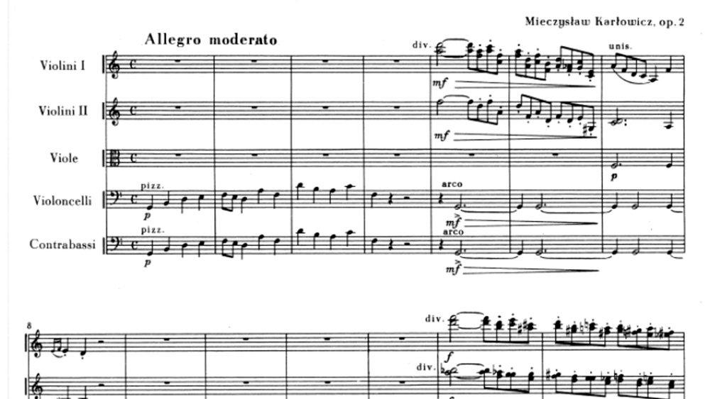Mieczysław Karłowicz - Serenade for strings mov.1 ex.1