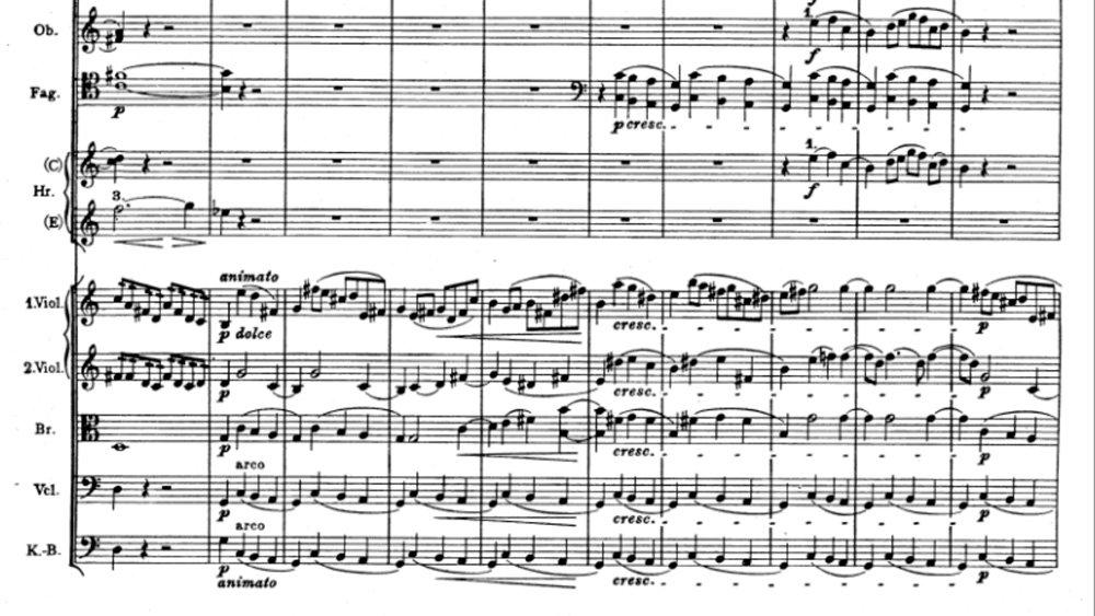 Brahms Symphony 1 Movement 4 analysis ex10