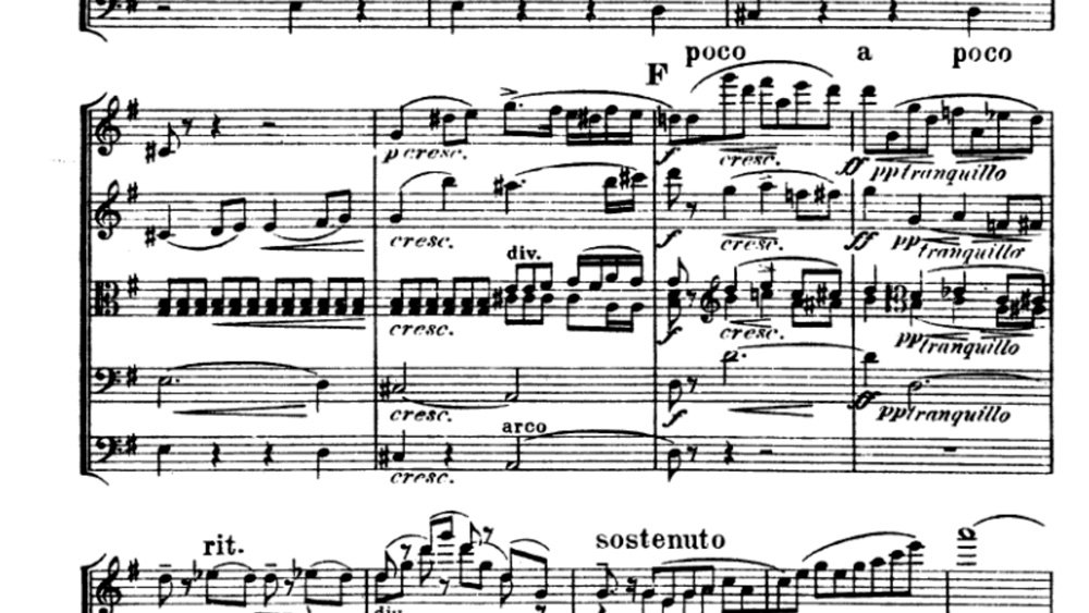 Suk Serenade for strings analysis mov 1 ex 6